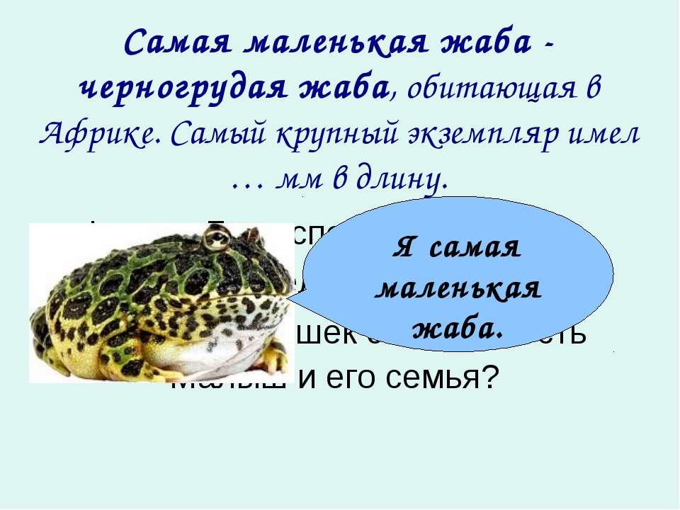 Самая маленькая жаба - черногрудая жаба, обитающая в Африке. Самый крупный эк...