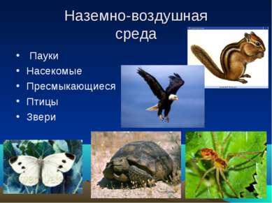 Наземно-воздушная среда Пауки Насекомые Пресмыкающиеся Птицы Звери