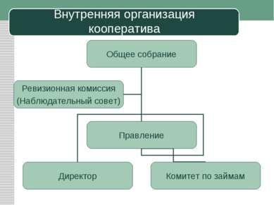 Внутренняя организация кооператива