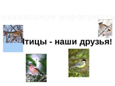 Внеклассное мероприятие Птицы - наши друзья!