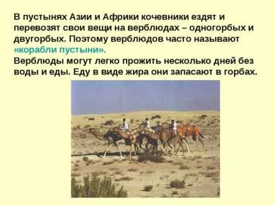 В пустынях Азии и Африки кочевники ездят и перевозят свои вещи на верблюдах –...
