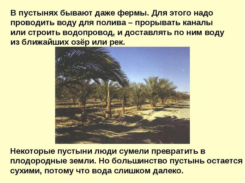 В пустынях бывают даже фермы. Для этого надо проводить воду для полива – прор...