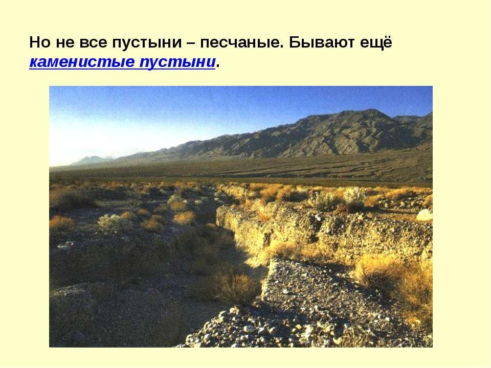 Но не все пустыни – песчаные. Бывают ещё каменистые пустыни.