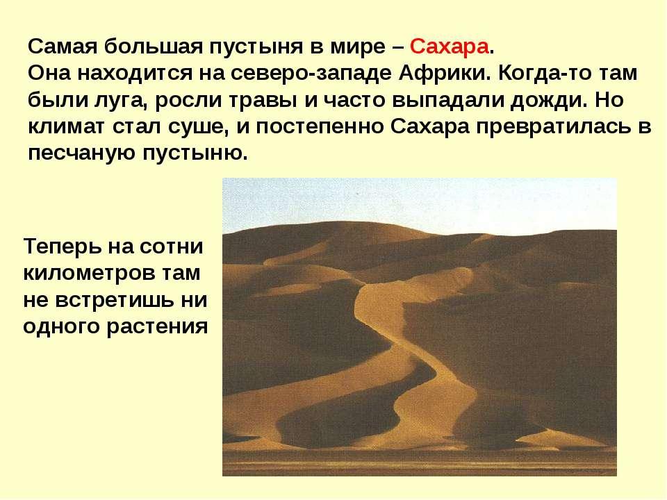 Самая большая пустыня в мире – Сахара. Она находится на северо-западе Африки....