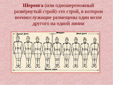 Шеренга (или одношереножный развёрнутый строй)-это строй, в котором военнослу...
