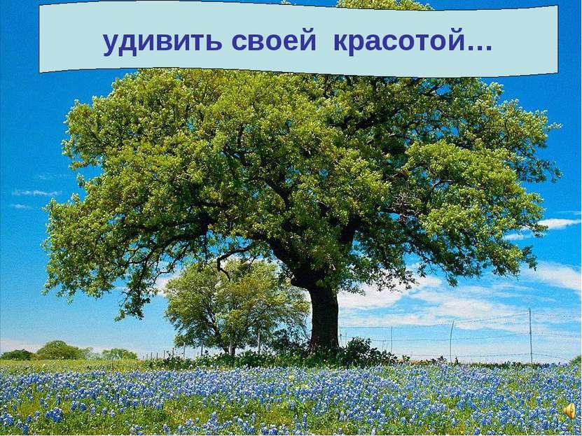 Все может родная природа: накормить своим хлебом… напоить из своих родников… ...