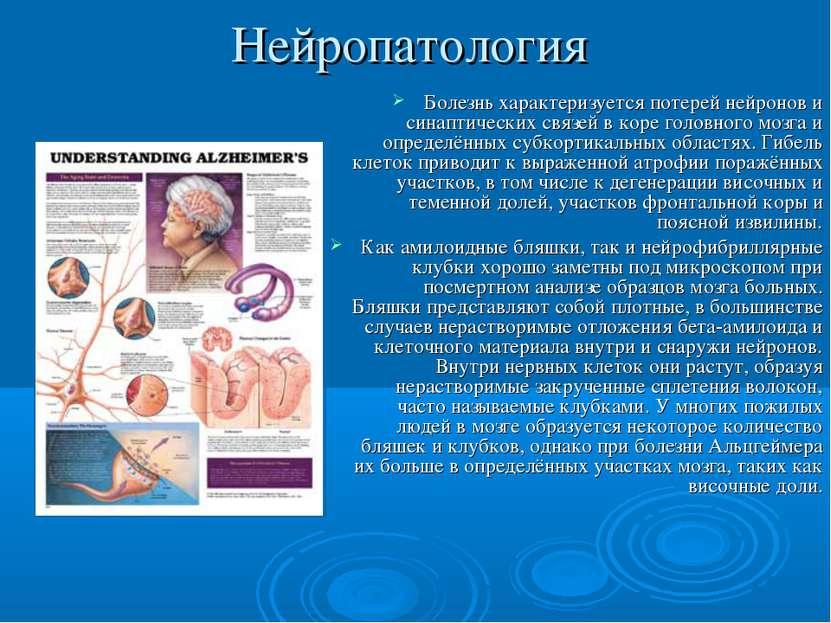 Нейропатология Болезнь характеризуется потерей нейронов и синаптических связе...