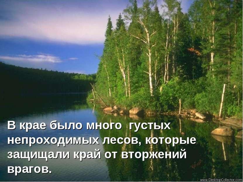 В крае было много густых непроходимых лесов, которые защищали край от вторжен...
