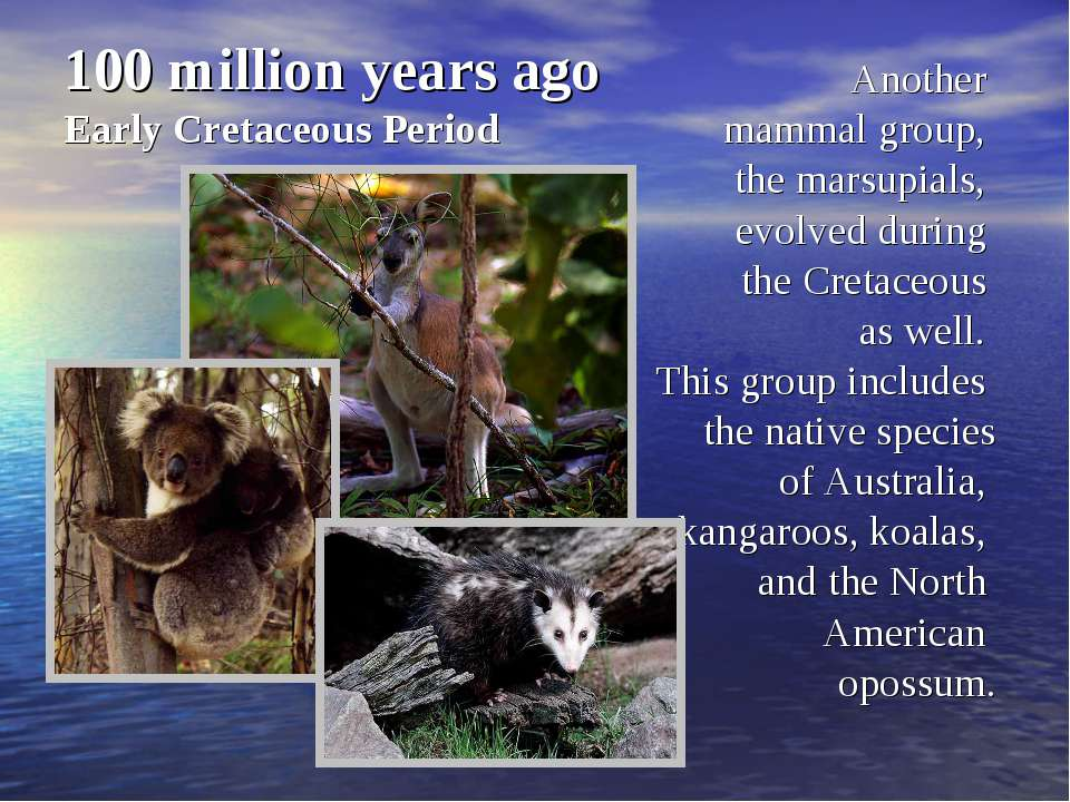 100 million years ago Early Cretaceous Period Another mammal group, the marsu...