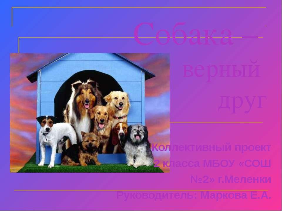 Собака – верный друг Коллективный проект 2 класса МБОУ «СОШ №2» г.Меленки Рук...
