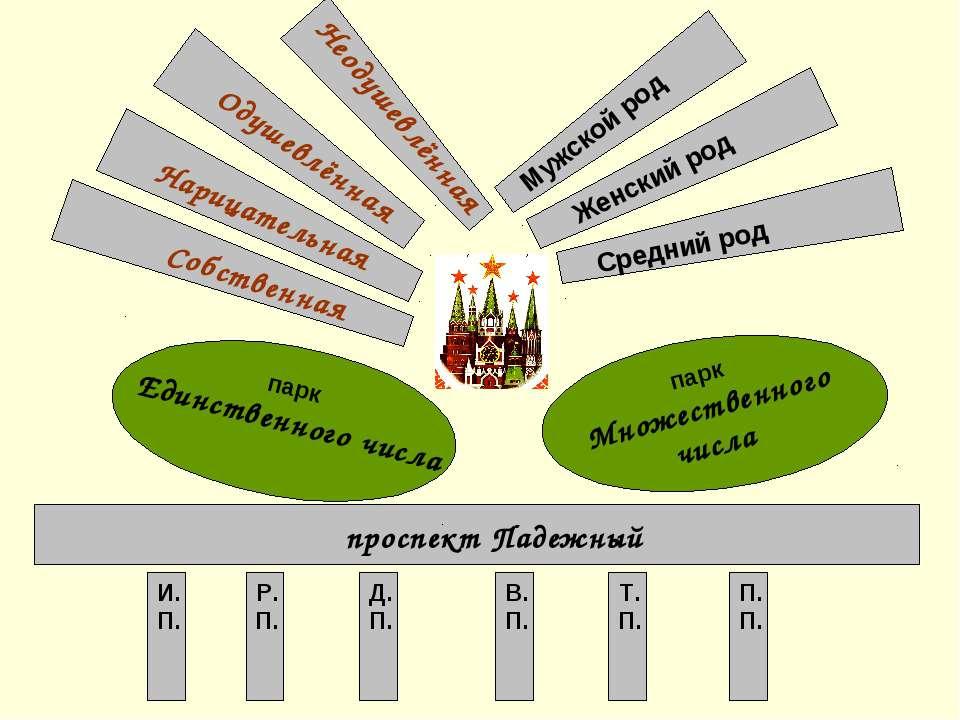 Собственная Нарицательная Одушевлённая Неодушевлённая Мужской род Женский род...