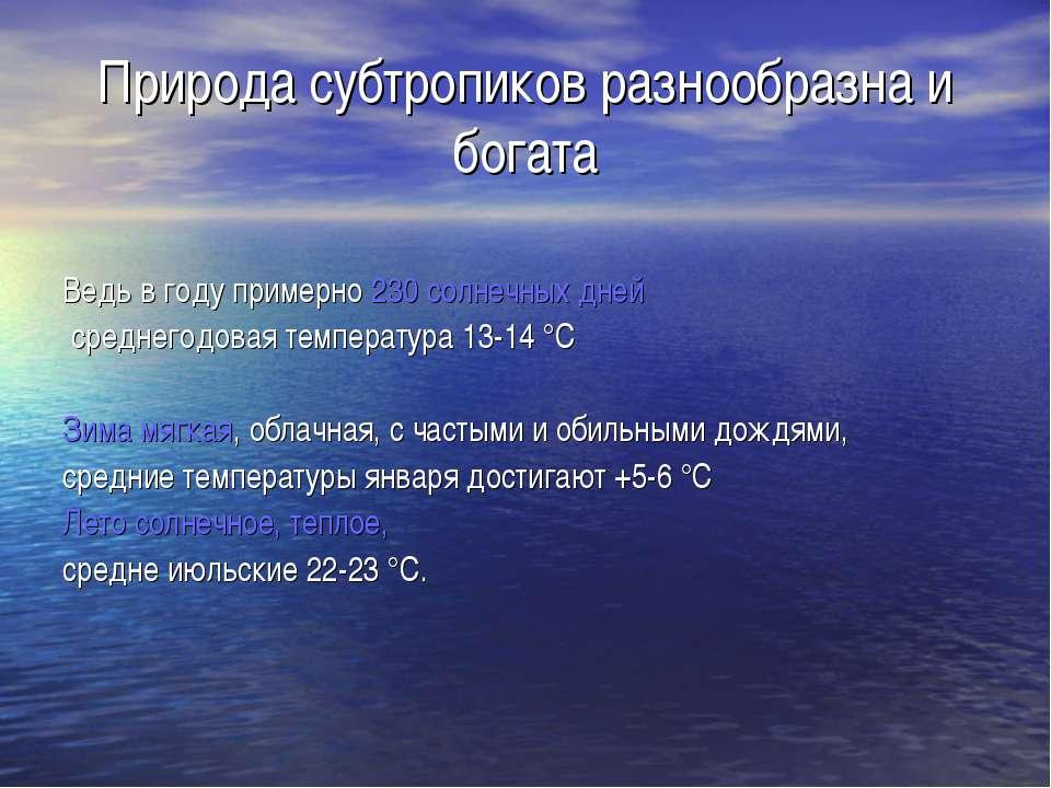 Природа субтропиков разнообразна и богата Ведь в году примерно 230 солнечных ...