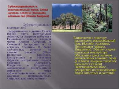 Субэкваториальные влажные леса сосредоточены в долине Ганга, южной части Цент...
