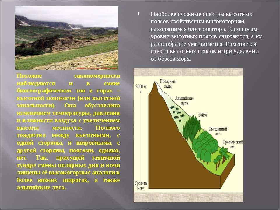 Похожие закономерности наблюдаются и в смене биогеографических зон в горах – ...