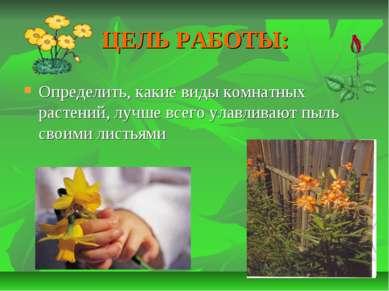 ЦЕЛЬ РАБОТЫ: Определить, какие виды комнатных растений, лучше всего улавливаю...