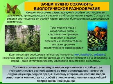 Каждая экосистема характеризуется особым соотношением организмов, принадлежащ...