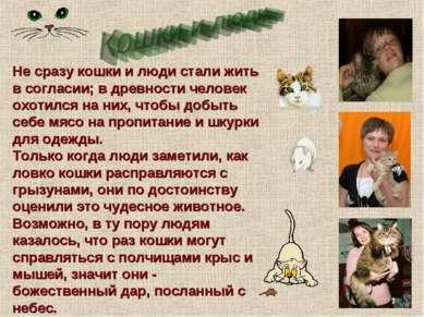 Не сразу кошки и люди стали жить в согласии; в древности человек охотился на ...