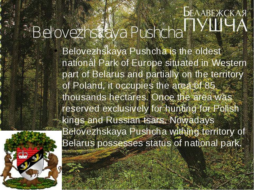 Belovezhskaya Pushcha Belovezhskaya Pushcha is the oldest national Park of Eu...