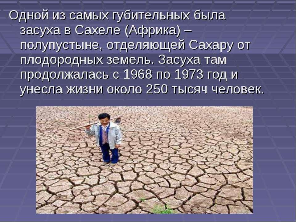 Одной из самых губительных была засуха в Сахеле (Африка) – полупустыне, отдел...