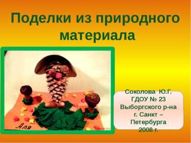 Поделки из природного материала Соколова Ю.Г. ГДОУ № 23 Выборгского р-на г. С...
