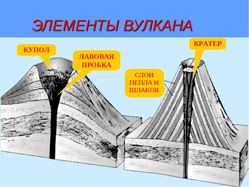 ЭЛЕМЕНТЫ ВУЛКАНА КУПОЛ ЛАВОВАЯ ПРОБКА СЛОИ ПЕПЛА И ШЛАКОВ КРАТЕР