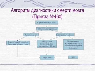 Алгоритм диагностики смерти мозга (Приказ №460) Первичная смерть мозга Обязат...