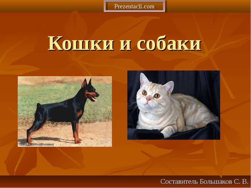 Кошки и собаки Составитель Большаков С. В. Prezentacii.com