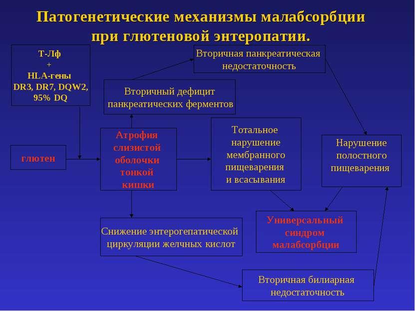 Патогенетические механизмы малабсорбции при глютеновой энтеропатии. глютен Ат...