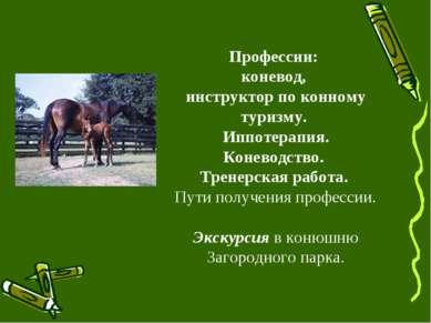 Профессии: коневод, инструктор по конному туризму. Иппотерапия. Коневодство. ...