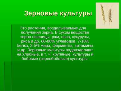 Зерновые культуры Это растения, возделываемые для получения зерна. В сухом ве...