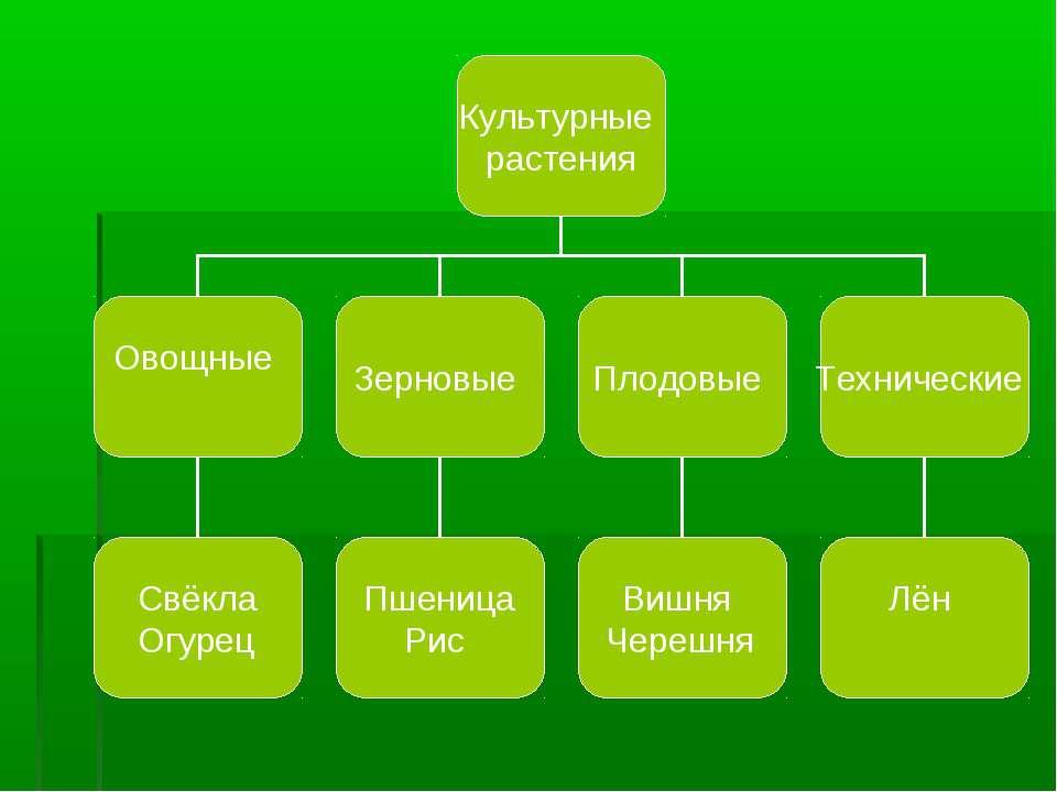 реферат украина 3 класс