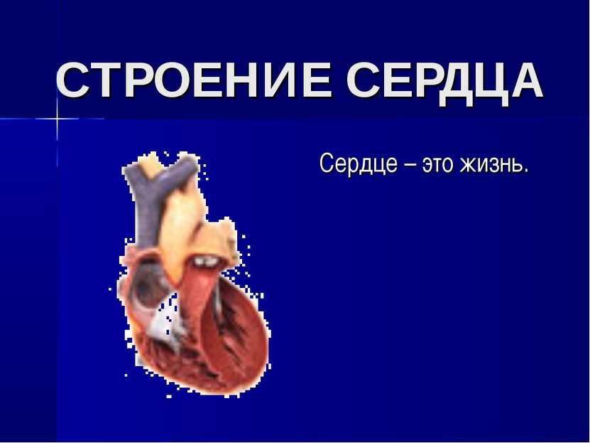СТРОЕНИЕ СЕРДЦА Сердце – это жизнь.