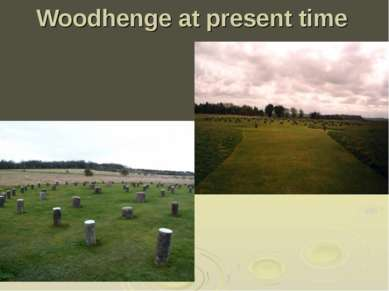 Woodhenge at present time