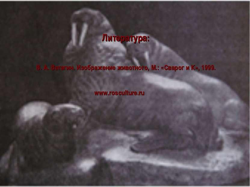 Литература: В. А. Ватагин. Изображение животного, М.: «Сварог и К», 1999. www...