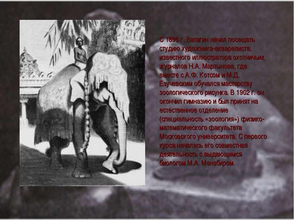 С 1896 г. Ватагин начал посещать студию художника-акварелиста, известного илл...