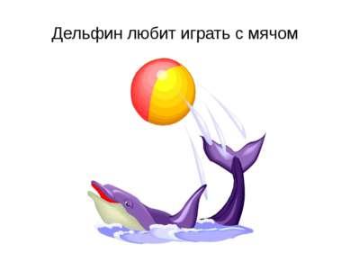 Дельфин любит играть с мячом