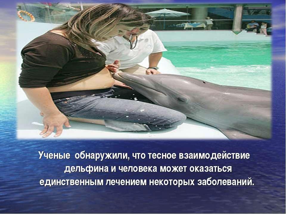 Ученые обнаружили, что тесное взаимодействие дельфина и человека может оказат...