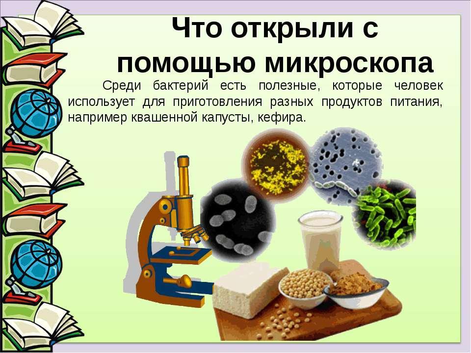 Среди бактерий есть полезные, которые человек использует для приготовления ра...