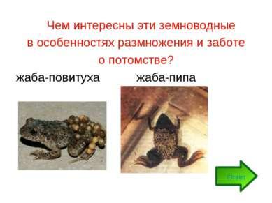 Чем интересны эти земноводные в особенностях размножения и заботе о потомстве...