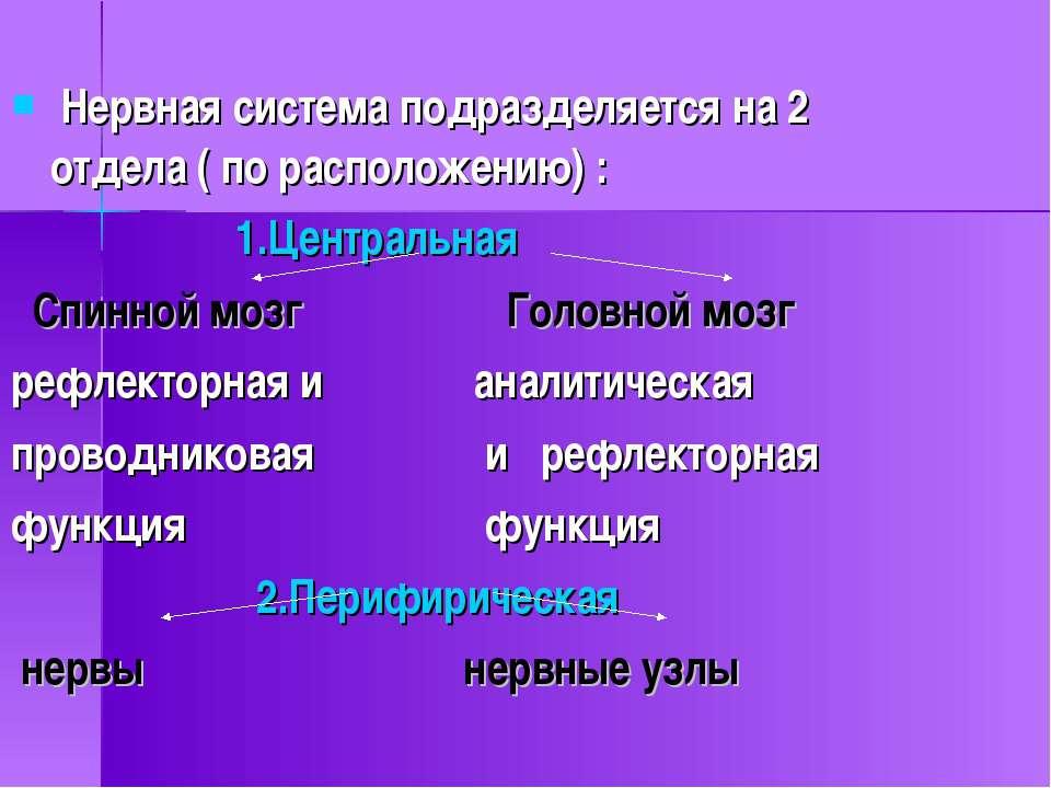Нервная система подразделяется на 2 отдела ( по расположению) : 1.Центральная...