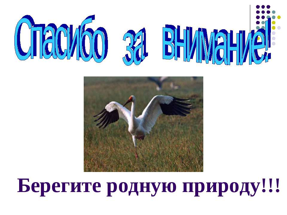 Берегите родную природу!!!
