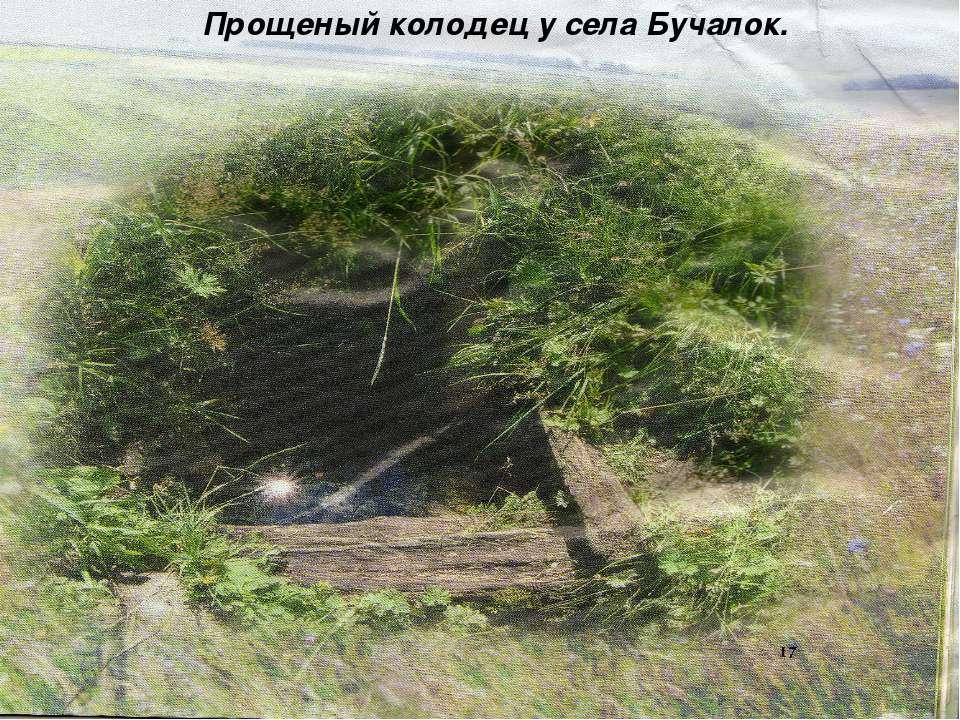 Прощеный колодец у села Бучалок..
