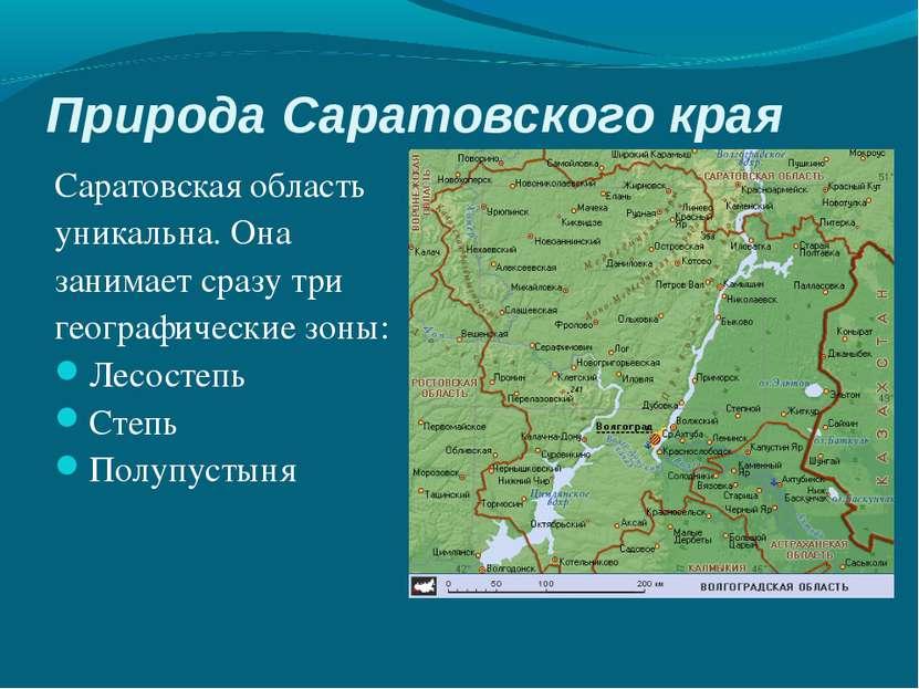 Природа Саратовского края Саратовская область уникальна. Она занимает сразу т...