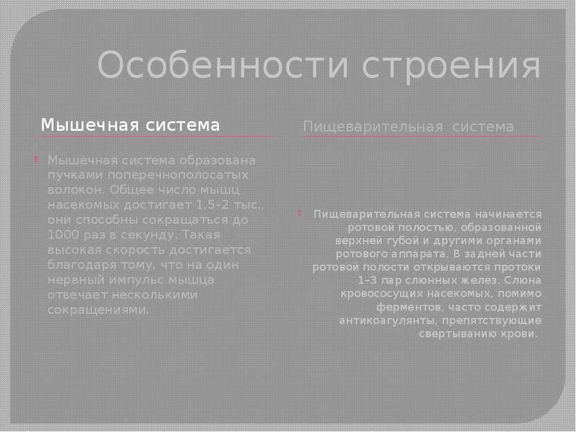 Особенности строения Мышечная система Пищеварительная система Мышечная систем...