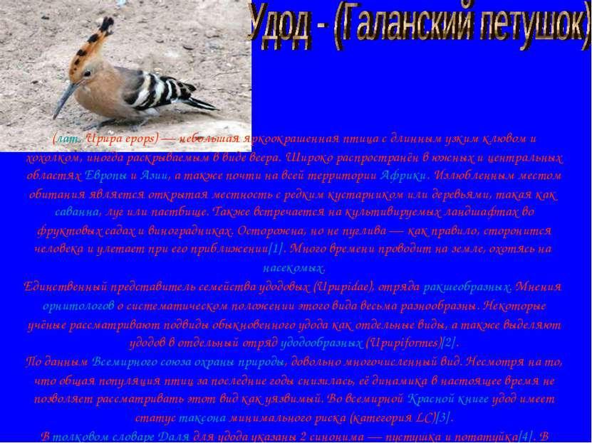 (лат.Upupa epops)— небольшая яркоокрашенная птица с длинным узким клювом и ...