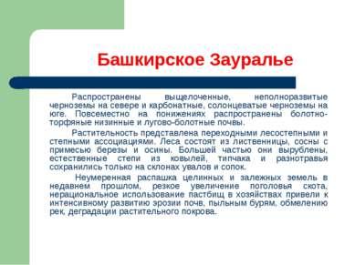 Башкирское Зауралье Распространены выщелоченные, неполноразвитые черноземы на...