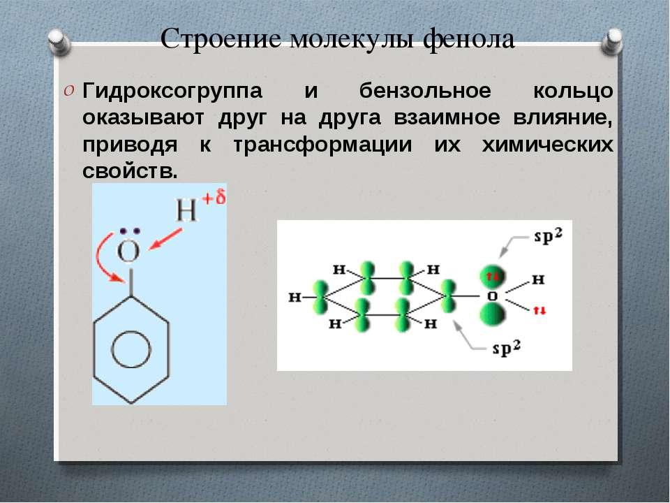 Строение молекулы фенола Гидроксогруппа и бензольное кольцо оказывают друг на...