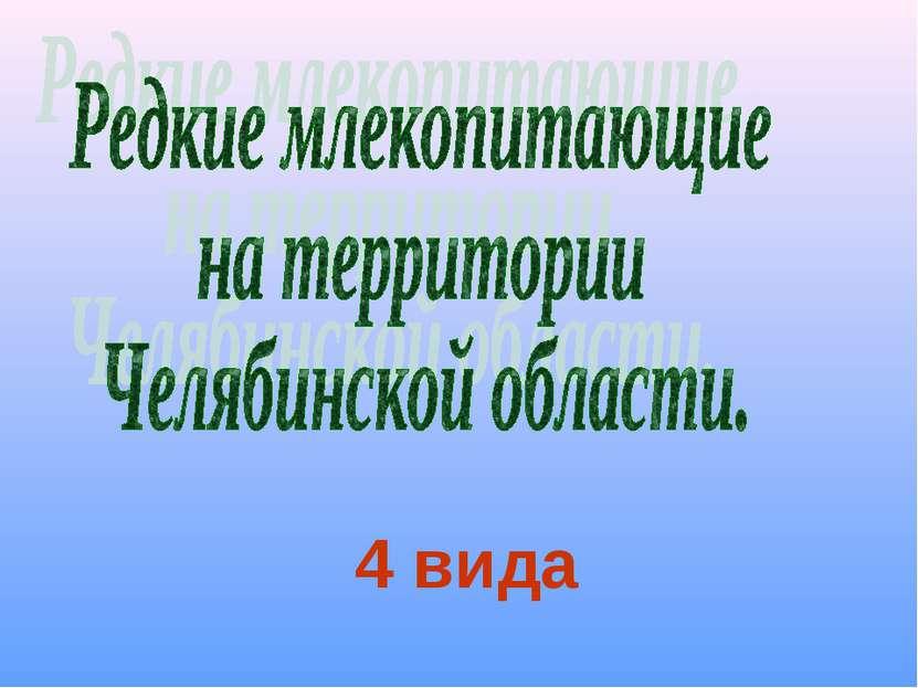 4 вида