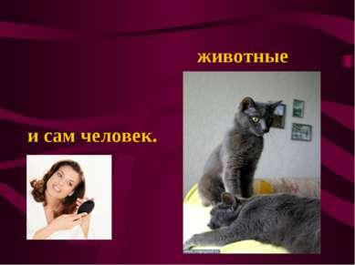 животные и сам человек.