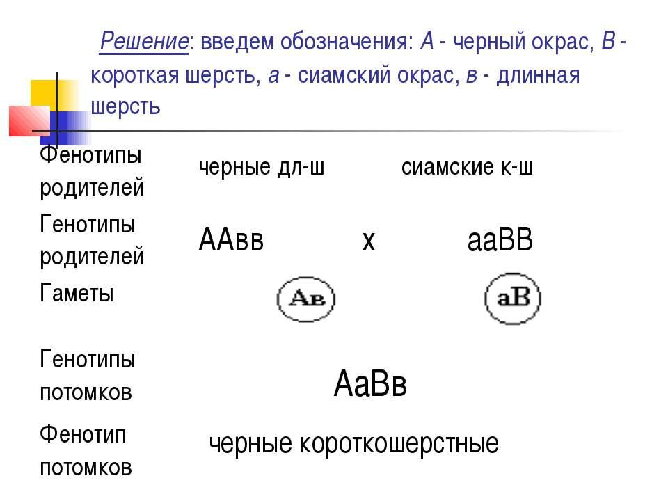 Решение: введем обозначения: А - черный окрас, В - короткая шерсть, а - сиам...